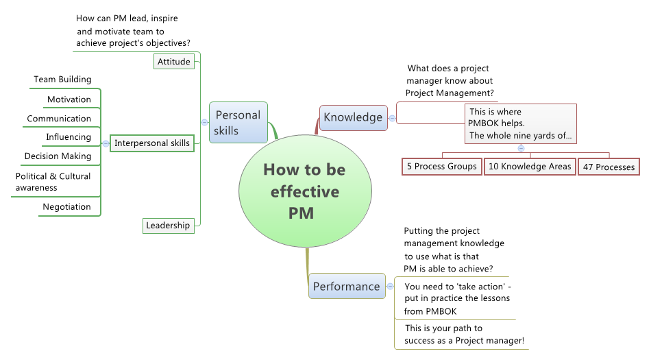 Effective project manager